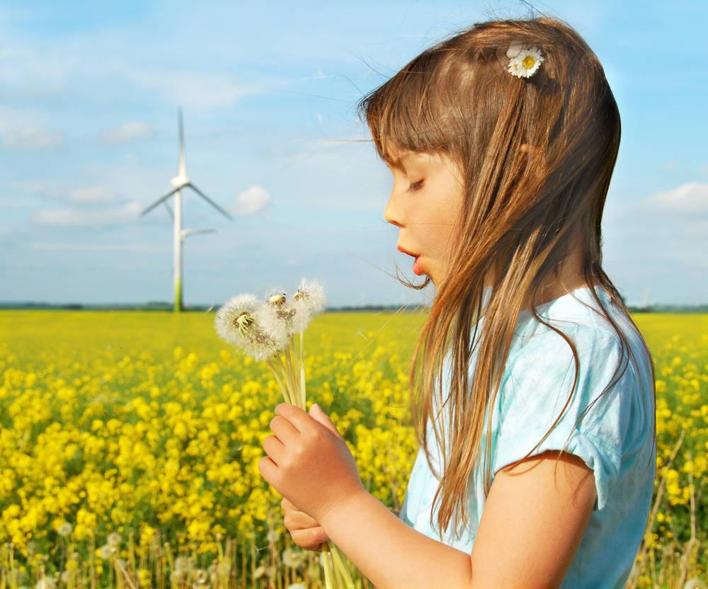 Innovaciones en Energías Renovables