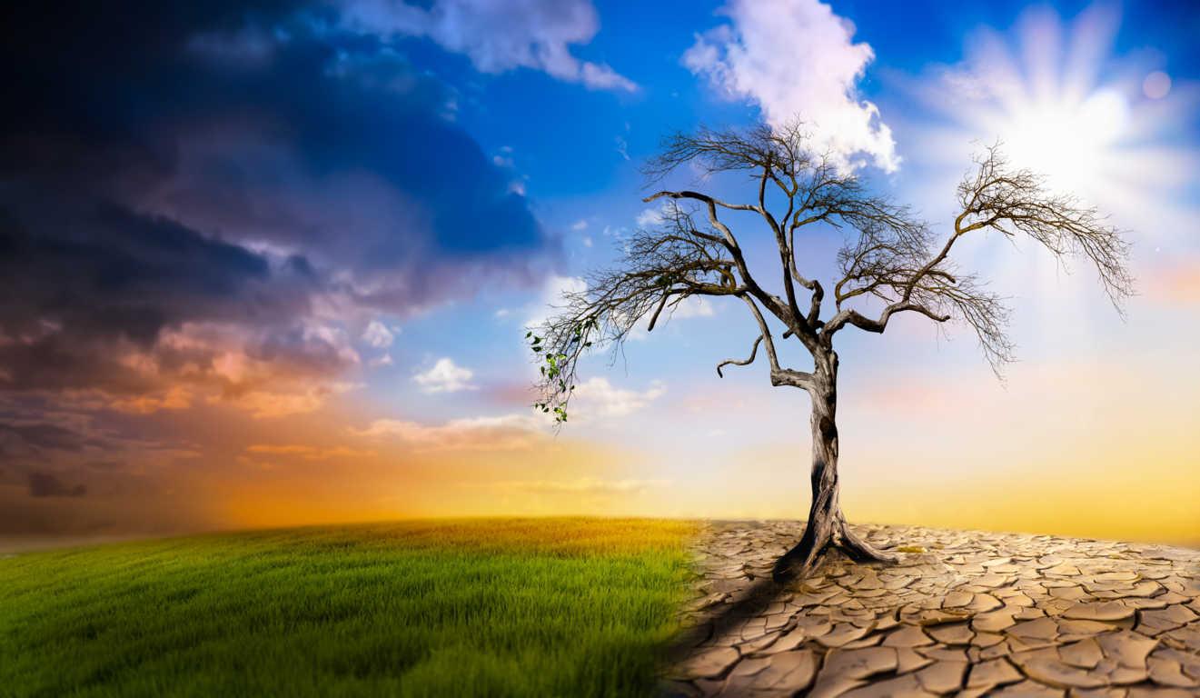 Los efectos del cambio climático en la agricultura