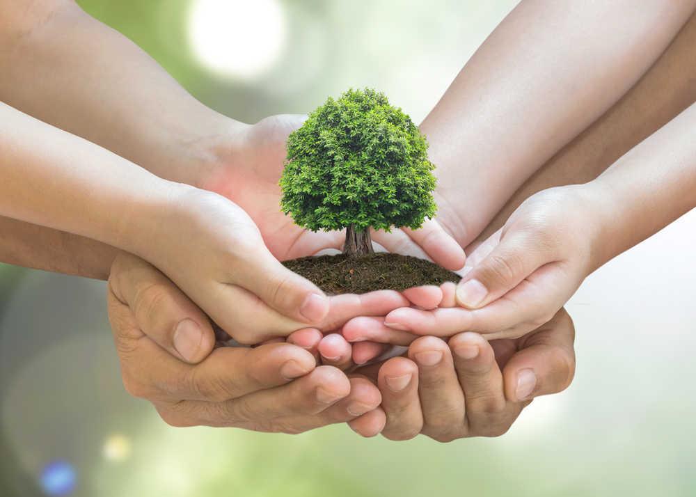 Mejora la imagen de todas aquellas empresas que apuestan por el cuidado del medio ambiente